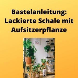 Bastelanleitung Lackierte Schale mit Aufsitzerpflanze